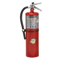 Fire Extinguisher, 10 lb, USA Only